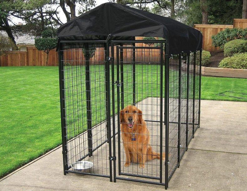 keep pet indoors