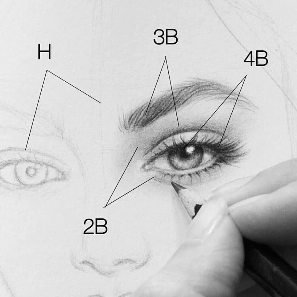 realisitic drawning