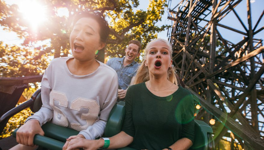 roller coaster phobia