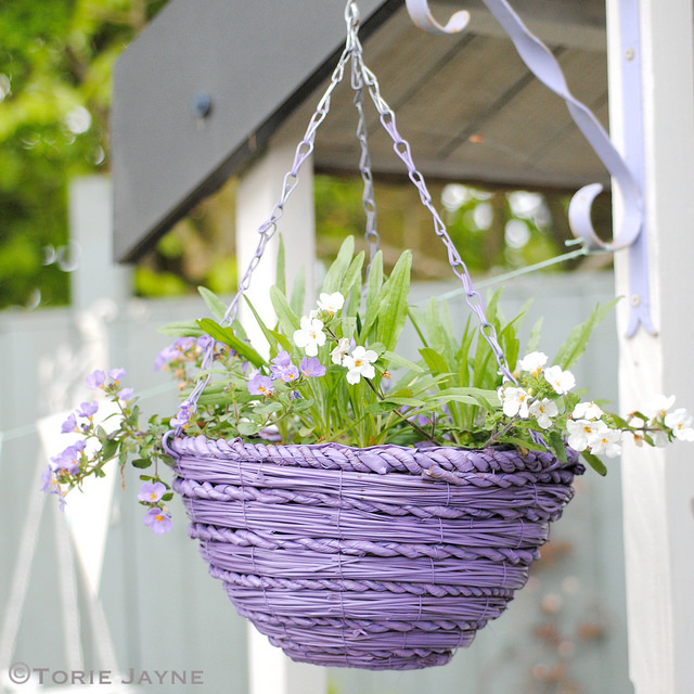 choose your favorite color and spray paint the hanging baskets