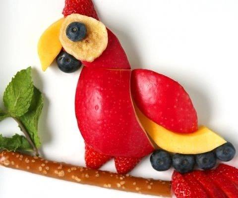 red apples parrot